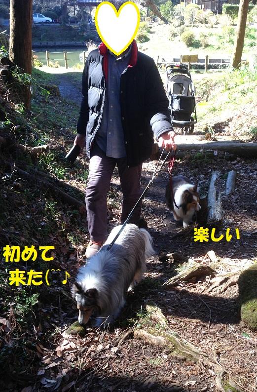 鎌倉散歩96