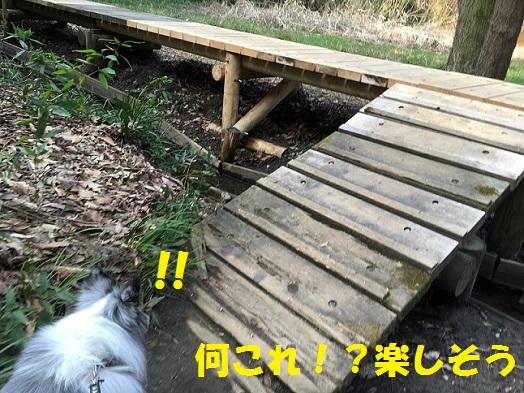 鎌倉湖92