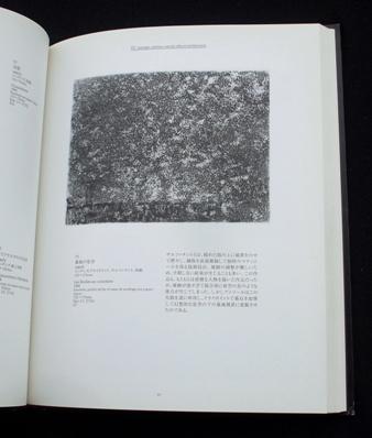 アンソール版画展(2001)3