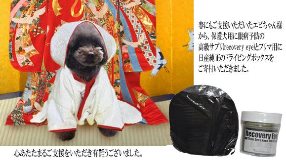 167-102エビちゃんさまご支援報告(2015秋) のコピー