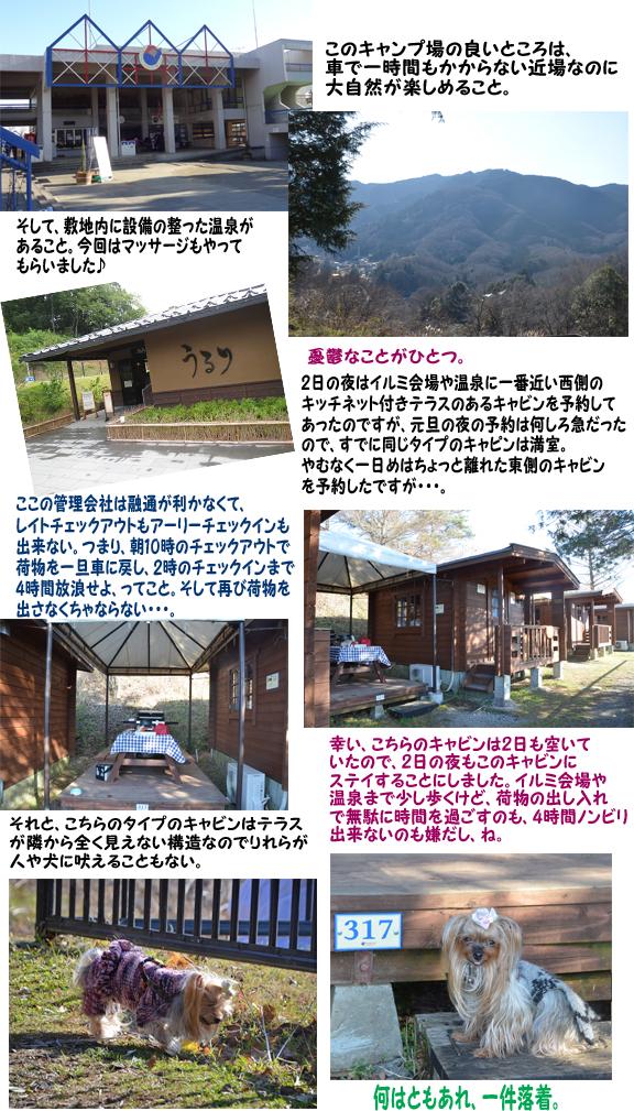 お正月キャンプ(キャビン) のコピー