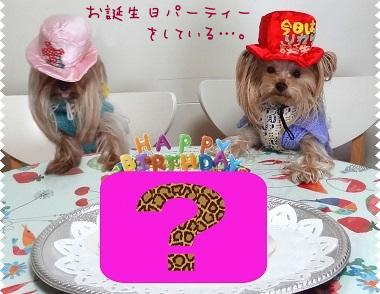 b2お誕生日パーティー