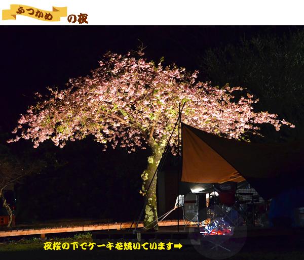 01 2日め 夜桜の下でカマを焼く