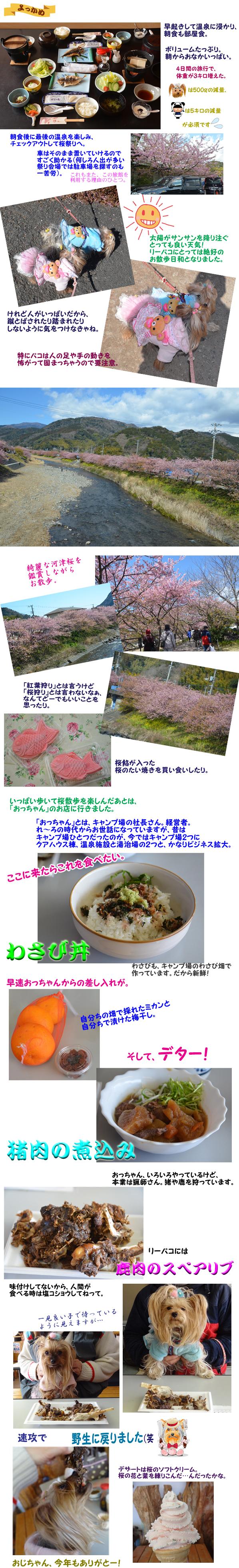 桜まつり のコピー