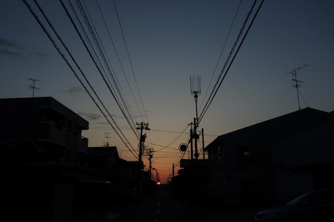 _DSC4238.jpg