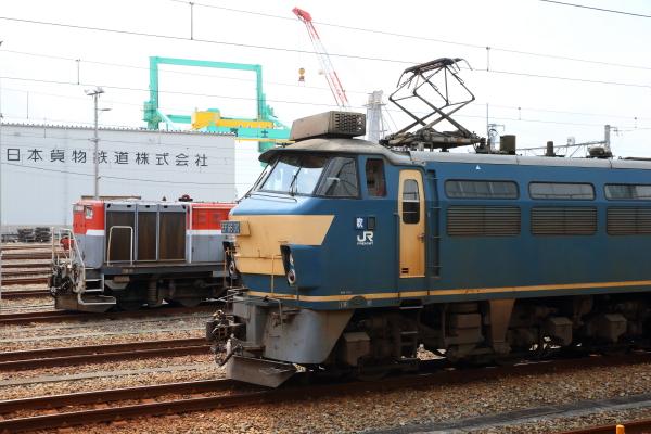 AM9P3956_1.jpg