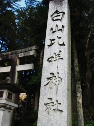 比咩神社-1