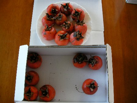 20160202保存柿⑤
