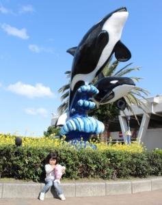 orcashow2.jpg