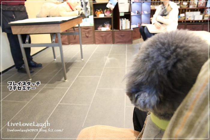 IMG_6518れじーな36