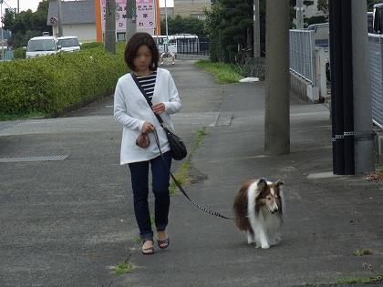 翔理ちゃんの白チュニ