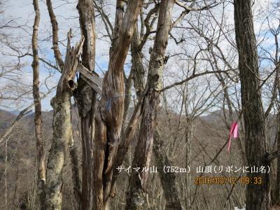 5サイマル山山頂(752m)_1