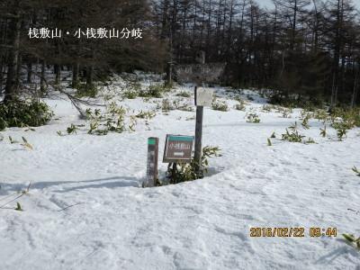 桟敷山・小桟敷山分岐