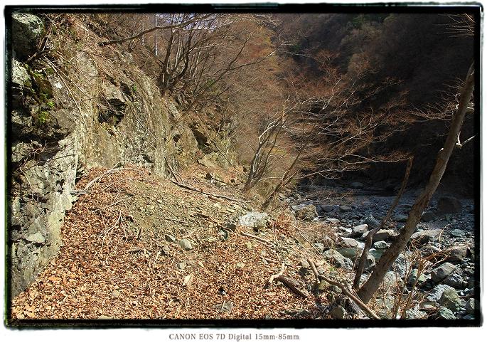1603hayakawa0113.jpg