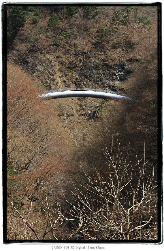 1603hayakawa0117.jpg