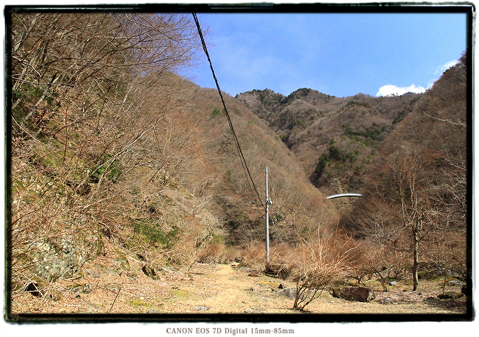 1603hayakawa0118.jpg