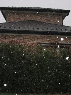 最後の雪・・かな