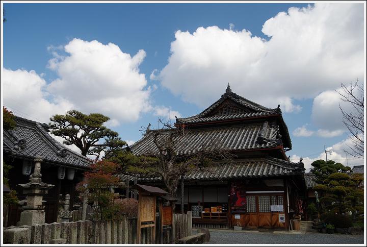 2016年3月1日 橋本・九度山 (4)