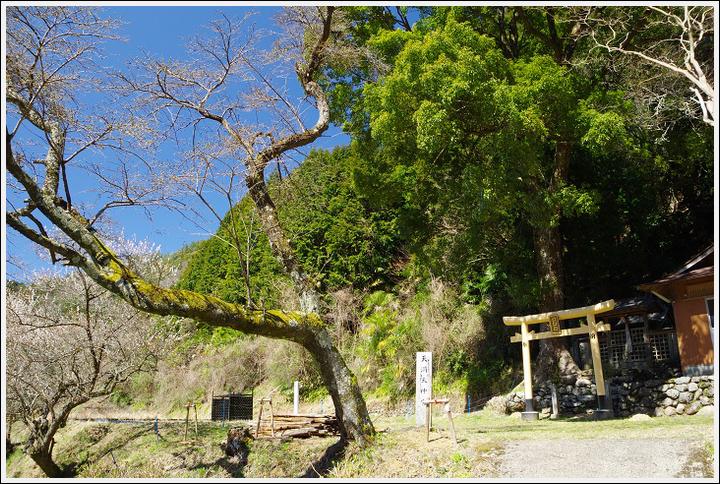 2016年3月22日 美里町ツーリング (2)