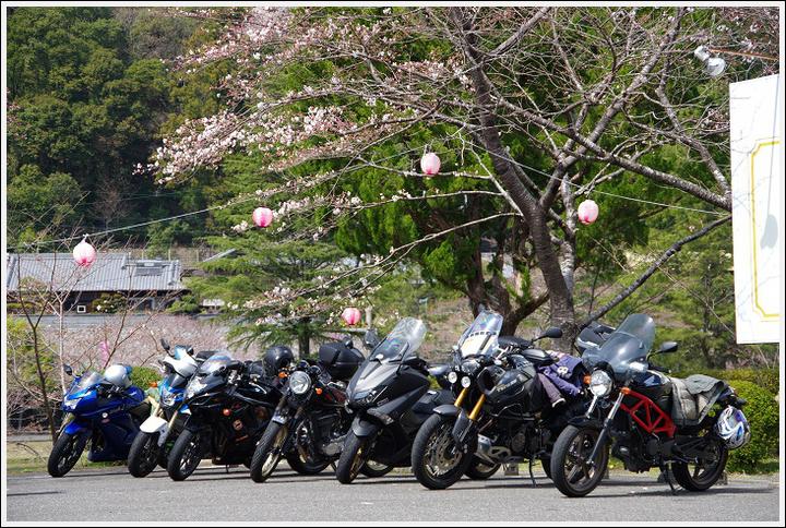 2016年3月29日 下北山スポーツ公園 (8)