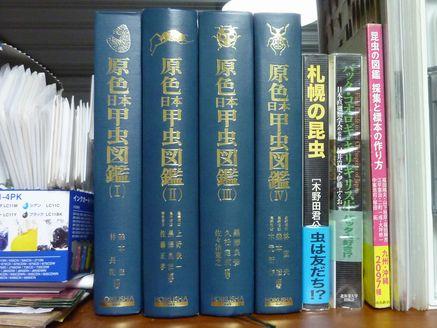 原色甲虫図鑑-1