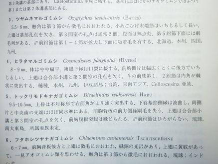 原色甲虫図鑑-3