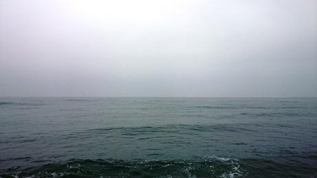 3-19 H川左岸 (1)