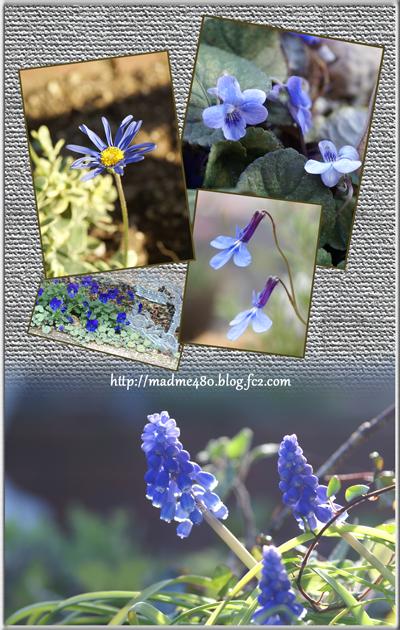 ブルー系小花web用
