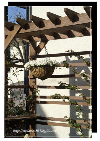 西側花壇パーゴラweb用