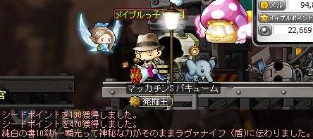 Maple14387a.jpg