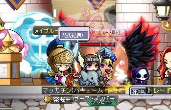 Maple14431a.jpg