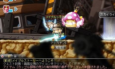 Maple14470a.jpg