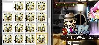 Maple14481a.jpg