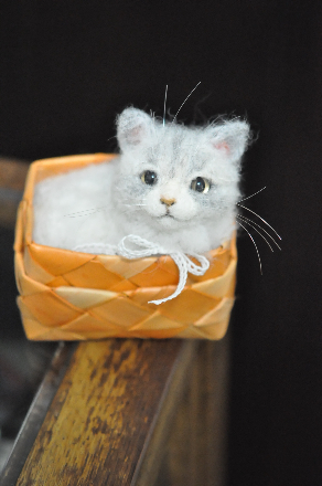 かご猫さん1603220002(1)
