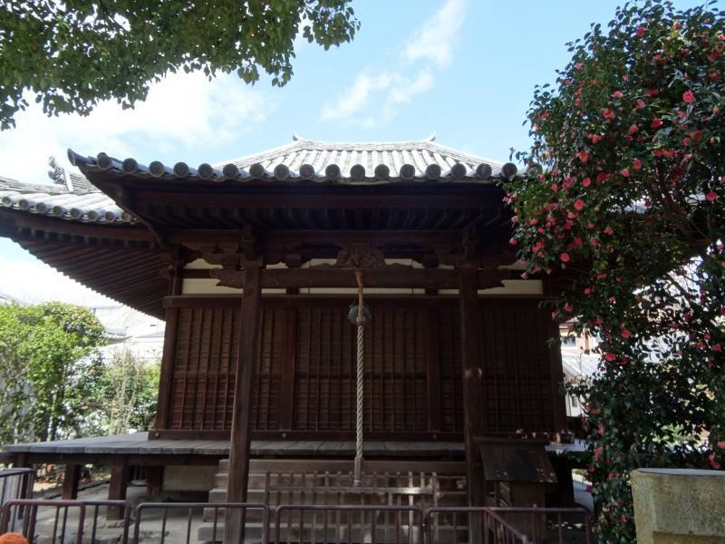 伝香寺10