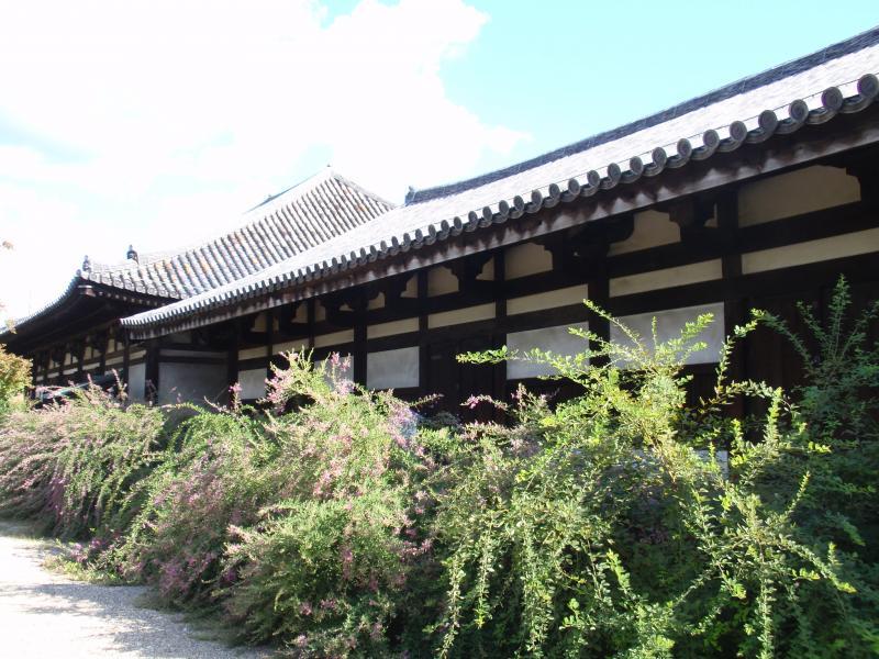 元興寺11