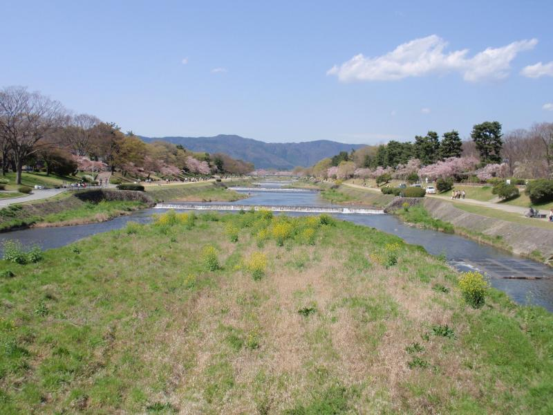 賀茂川堤1