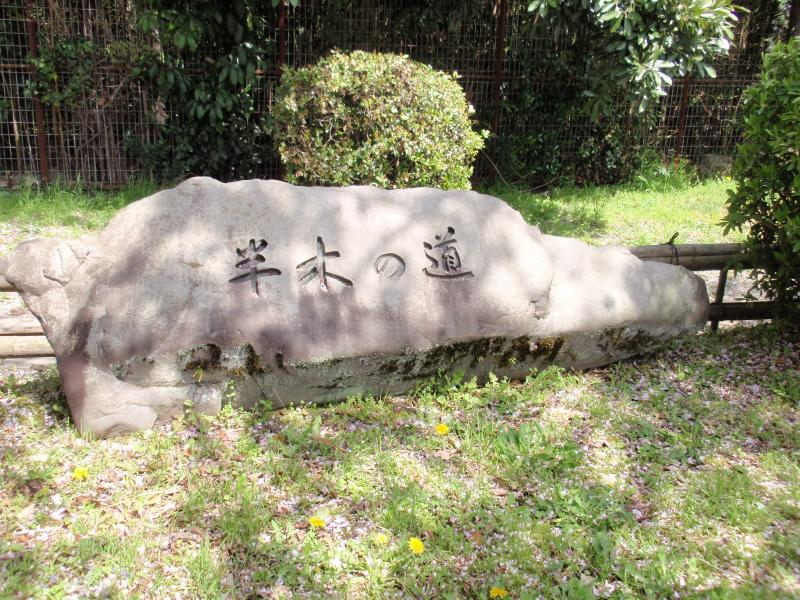 賀茂川堤3