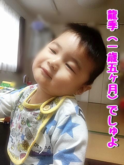 龍季一歳五ヶ月