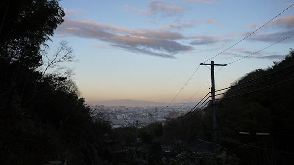 yamasirorinndou1512-003b.jpg