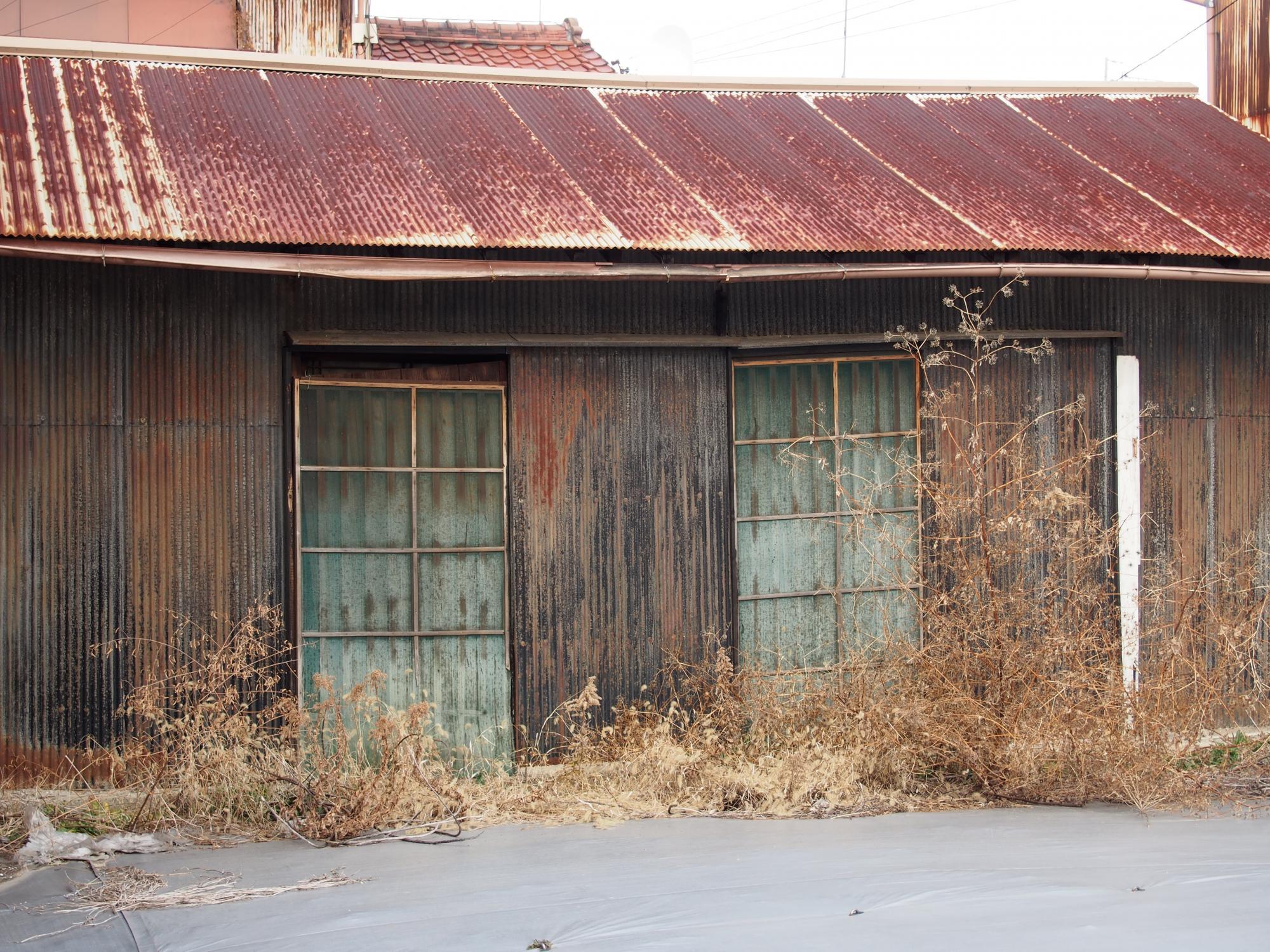 茶色いすすきと家