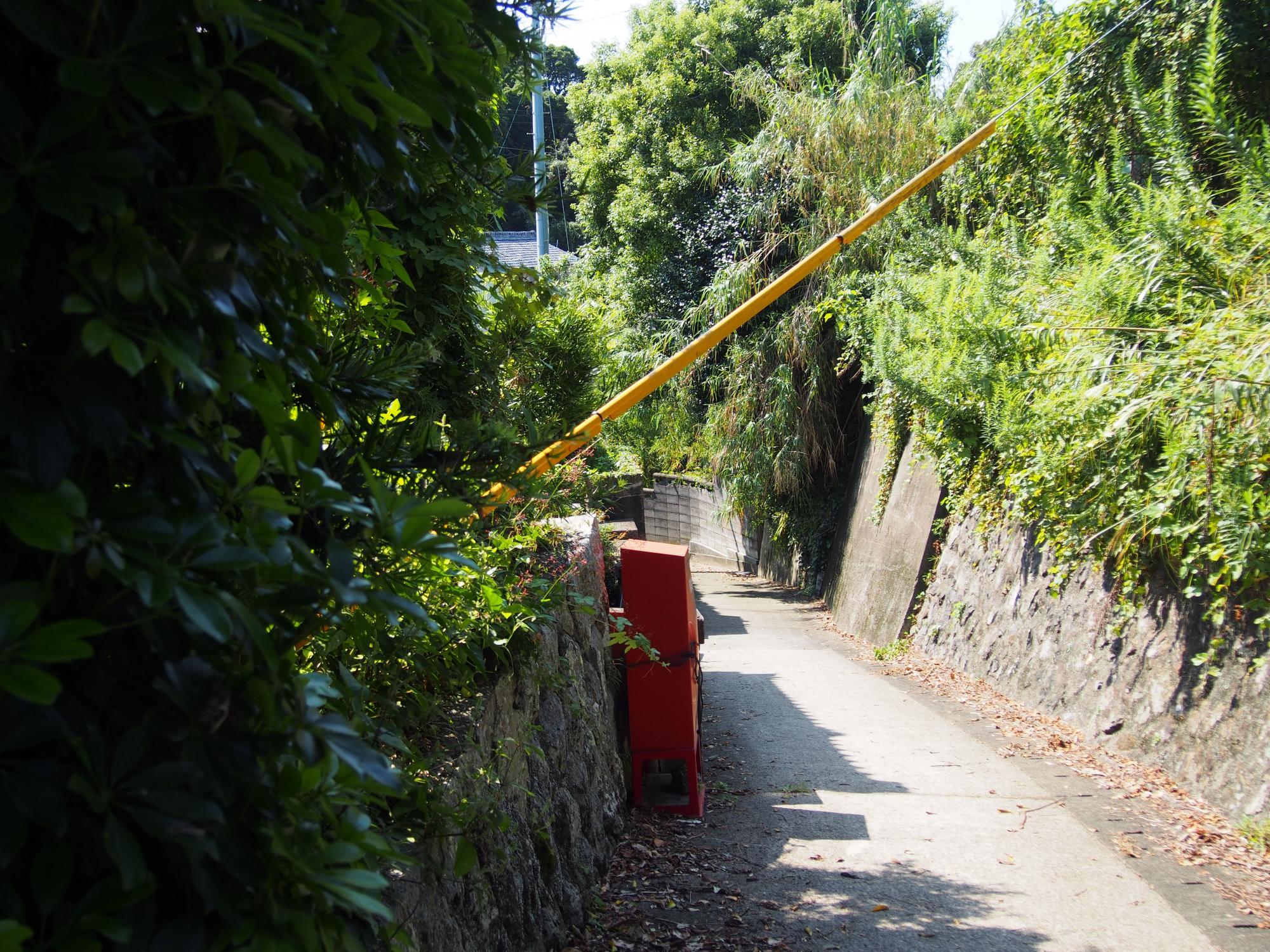 赤いポスト黄色い柱の道