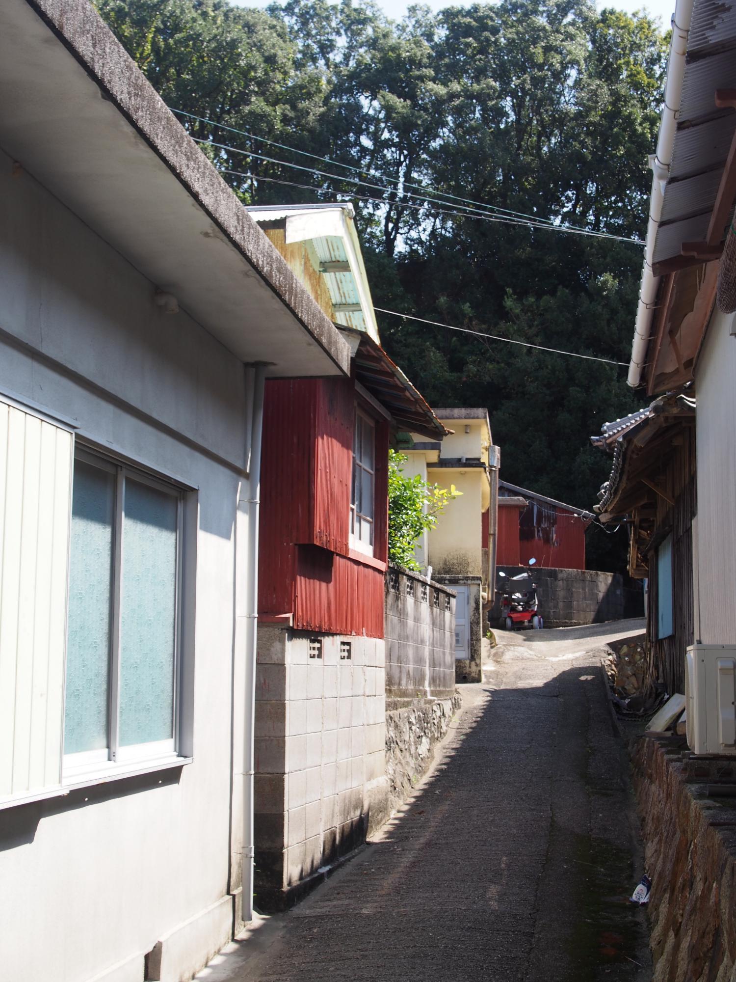 たての家の道