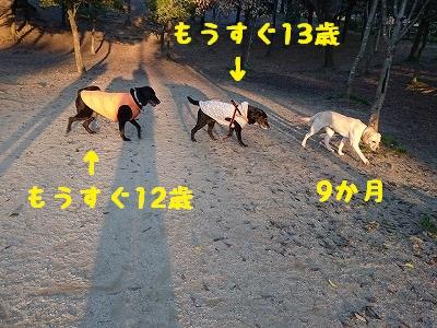 20160312_2.jpg