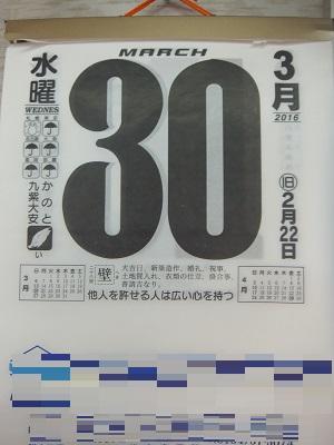 286g.jpg