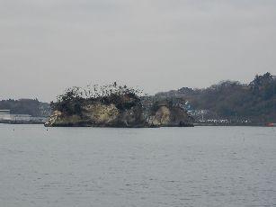 松島遊覧船 (10)