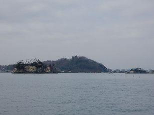 松島遊覧船 (11)