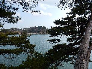 松島福浦橋 (15)