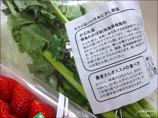 大地のかぶれ菜、イチゴ