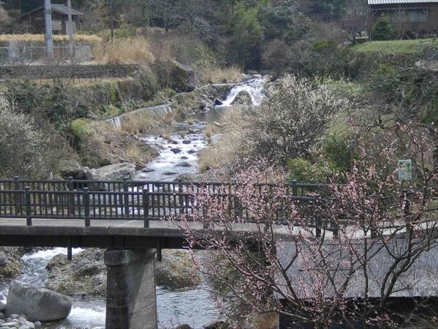 岩岳川 080322 (3)_S-size